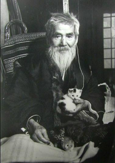 熊谷守一と猫