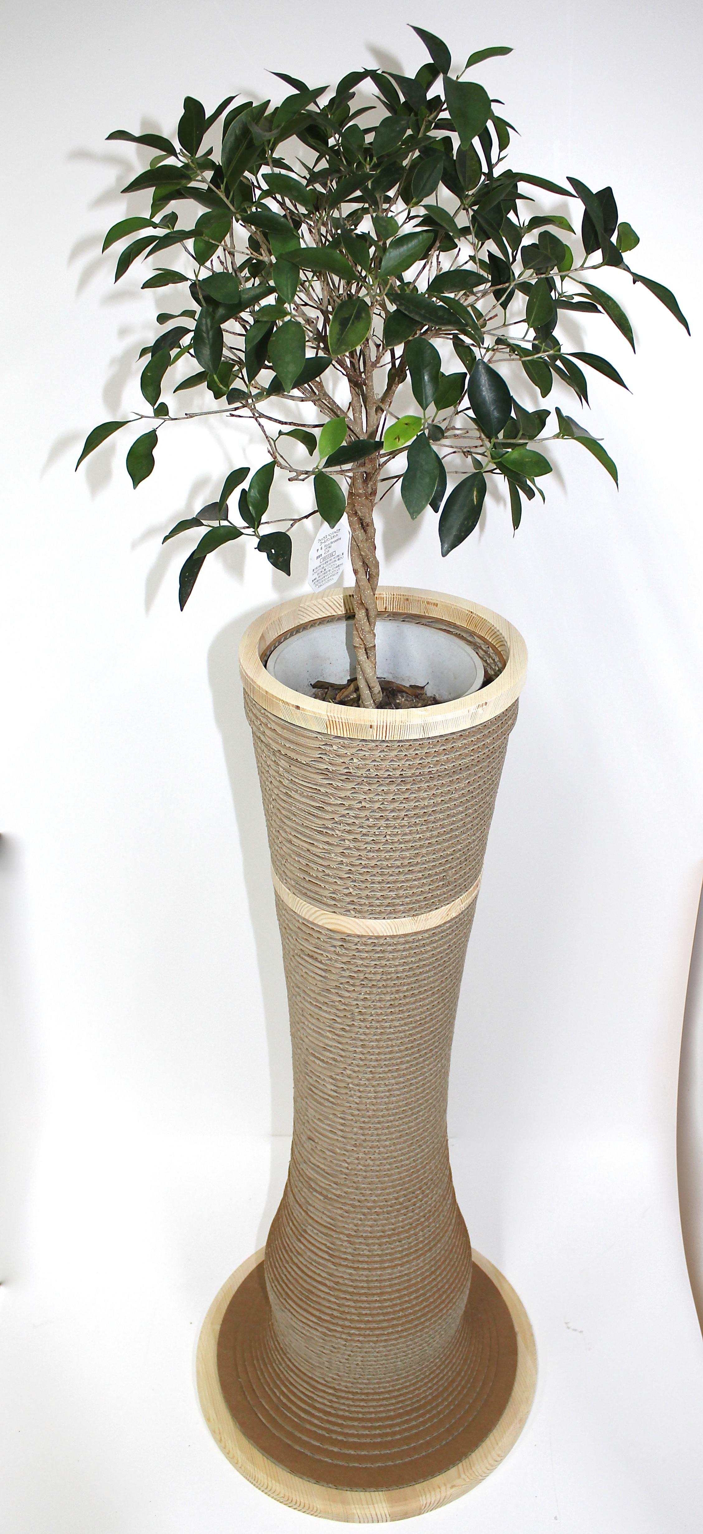 カリカリーナ giorno 植木鉢