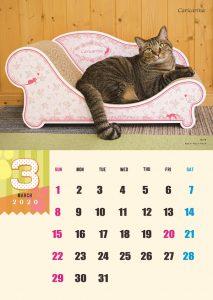 calendar2020-03