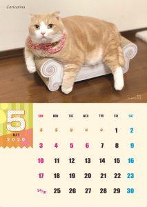calendar2020-05