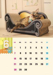 calendar2020-06