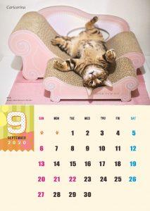 calendar2020-09