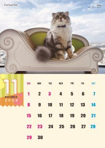 calendar2020-11