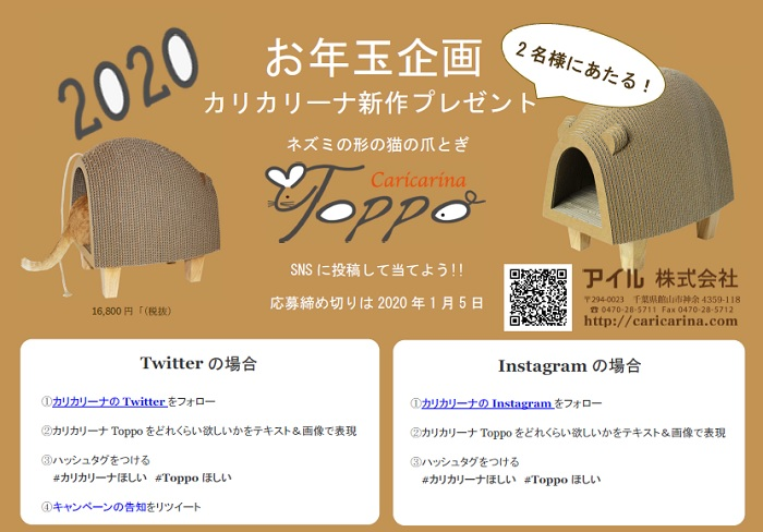 toppo_ny_present