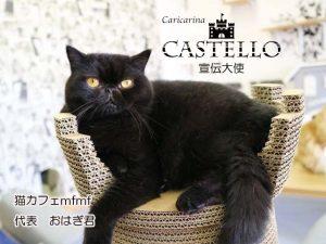castello宣伝大使
