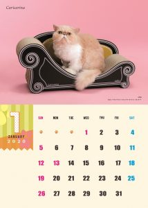 calendar2020-01