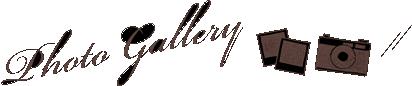 p_gallery