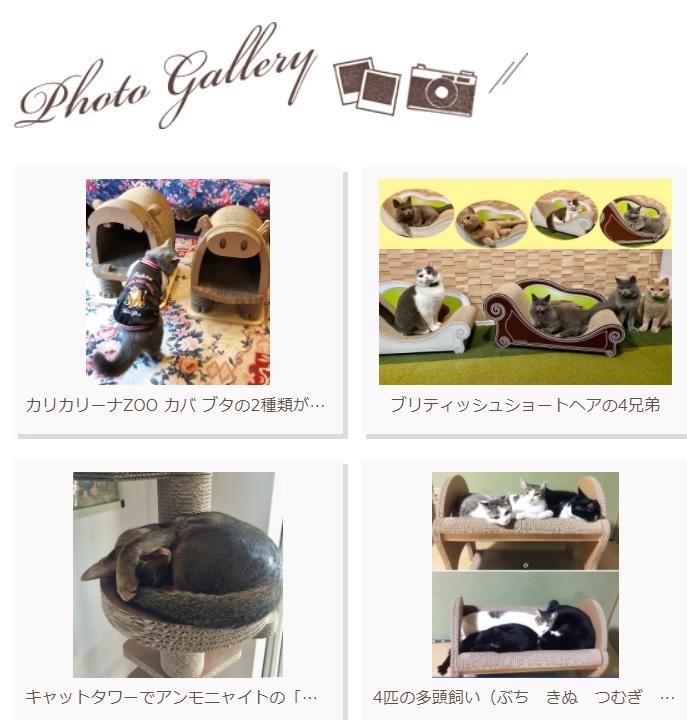 gallery1022-2