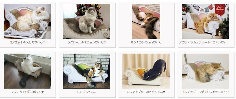 gallery_8