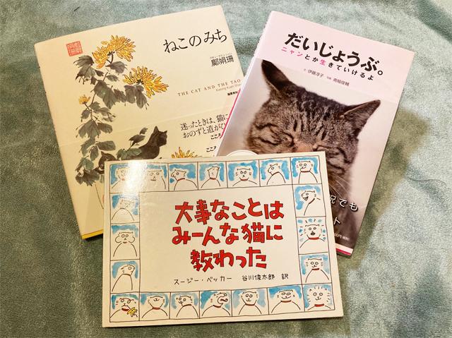 mfm-17_books