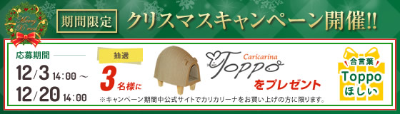 クリスマスキャンペーン Toppoプレゼント